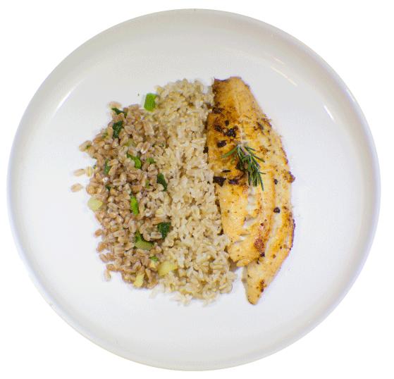 MealPro Wild Salmon & Veggie