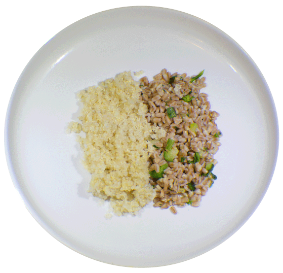MealPro Grains and Quinoa